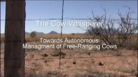 Cow_whisperer